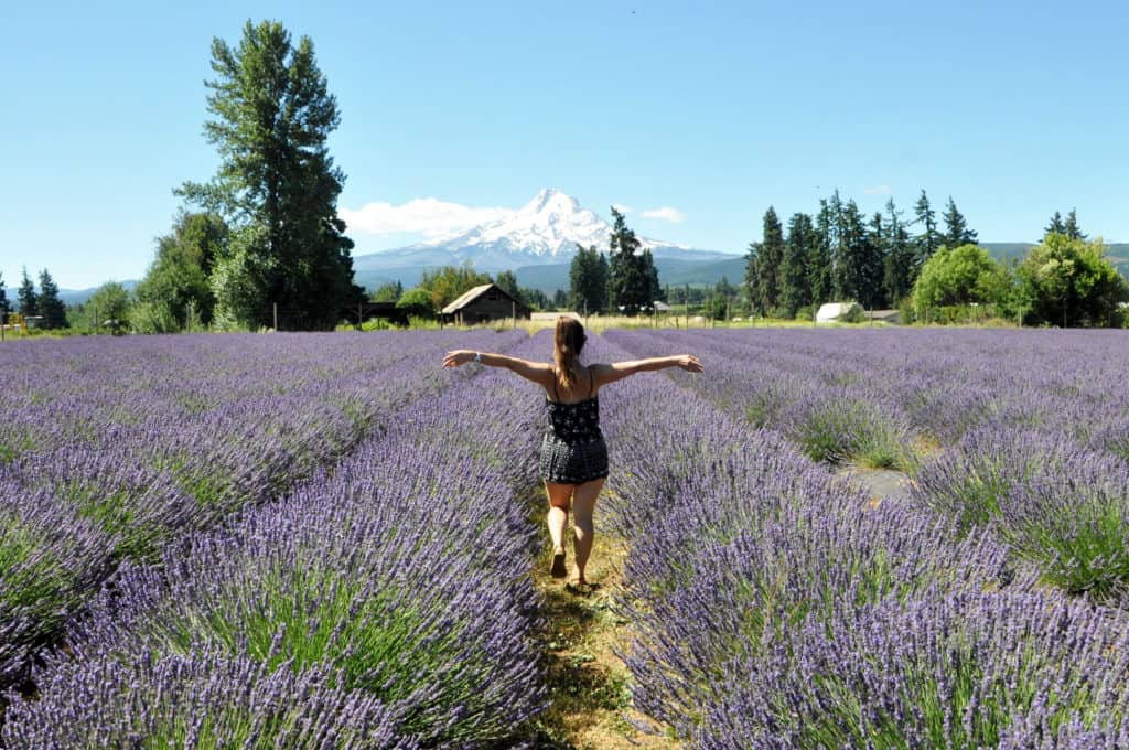 Katie in a field of lavender